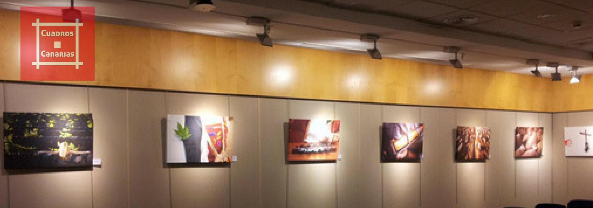 Exposiciones canarias